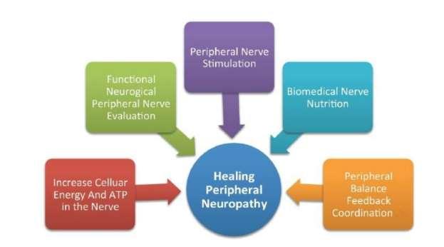 Chiropractic Wilmington NC Neuro Graphic